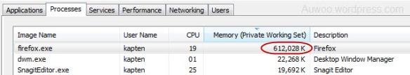 Firefox Yang Rakus Memory