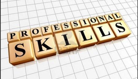 professional skill